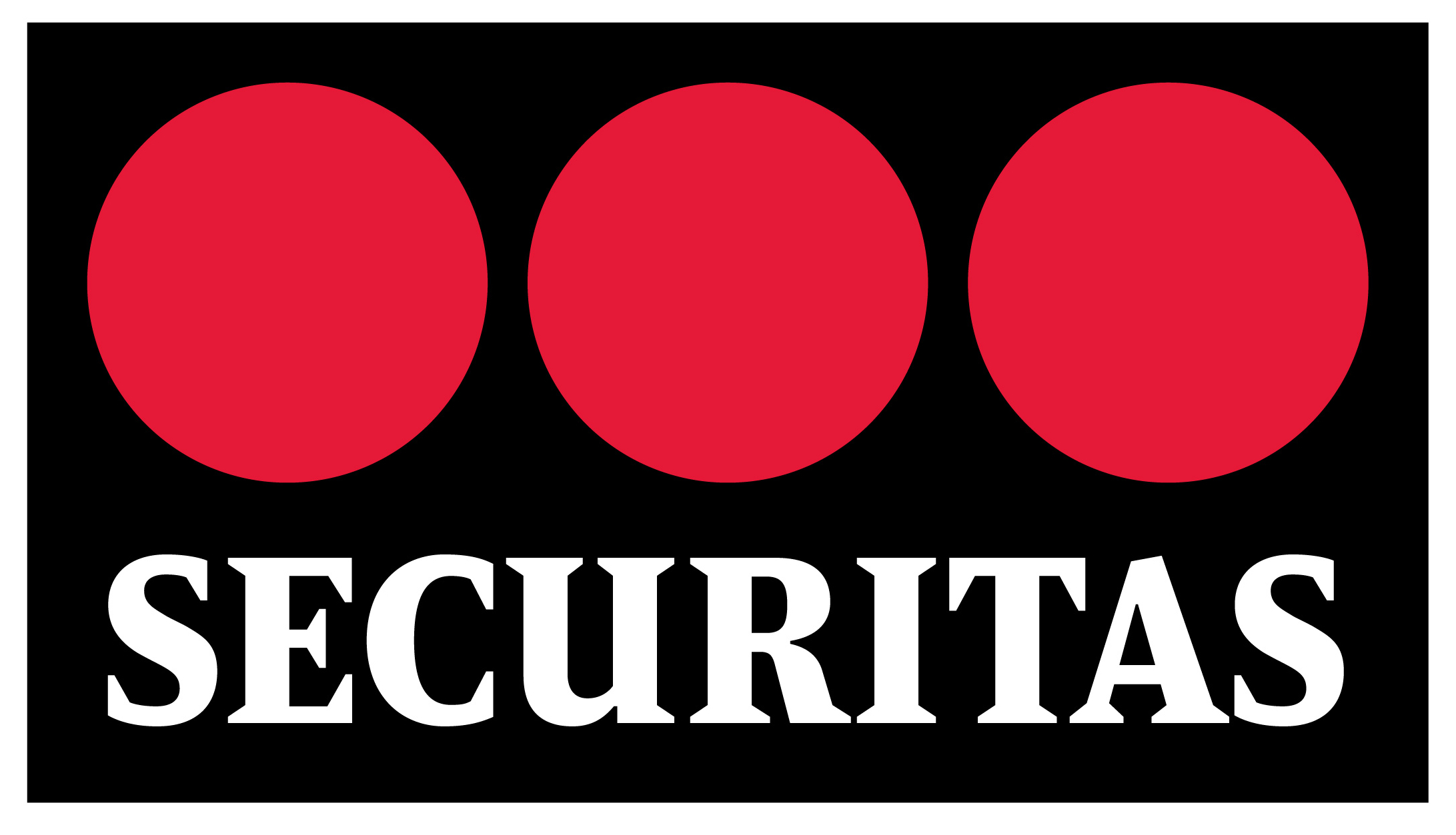 Privacy Policy >> Securitas | Chainels