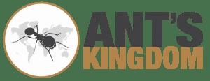 Ant's Kingdom